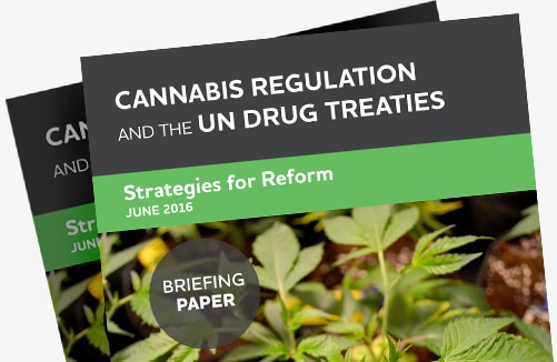 CDPC-Home-Page_Cannabis-UNTreaties-Brief_501x326px
